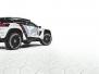 Reveal Peugeot 3008 DKR